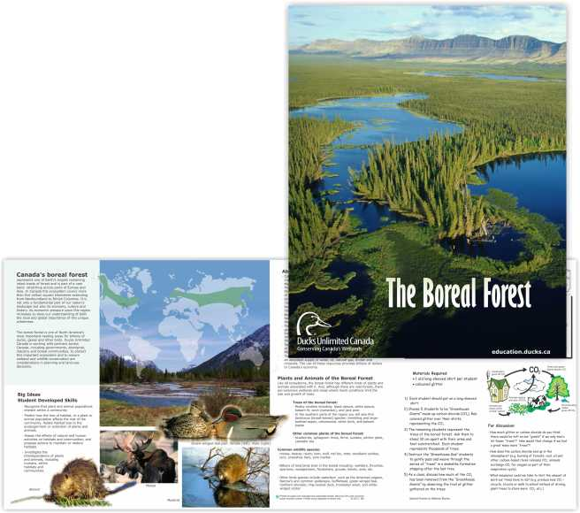 Booklet that is part of a large series created for the national Ducks Unlimited Canada education program.